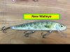 New Walleye