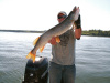 Cass Lake Minnesota Pike